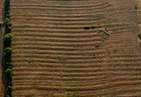 ridge and furrow field patterns