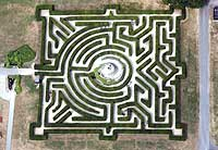 aerial photograph of maze