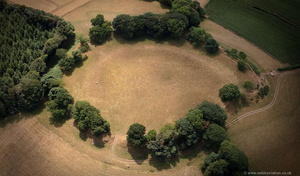 Cadbury Castle  Iron Age hillfort  from the air