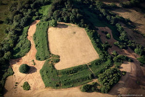 Dumpdon Camp hillfort  from the air
