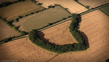 Stockland Great Castle hillfort  from the air