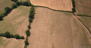 parch marks revealing a prehistoric enclosure from the air