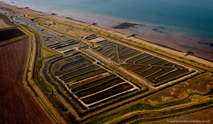 Oyster Farm  Reculver from the air