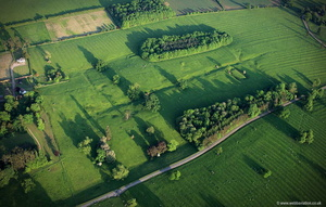 Baggrave deserted medieval village ( DMV )    Leicestershire  aerial photograph