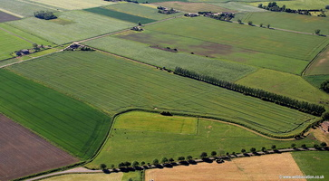 crop marks near Holbeach St Johns Lincolnshire aerial photograph