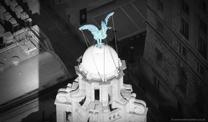 the Liver Birds in Liverpool aerial photo