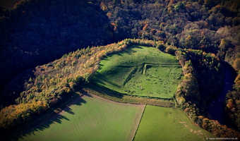 Magdalen Wood enclosure   North Yorkshire aerial photograph