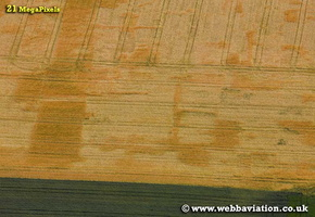 cropmarks showing the archaeology of ancient settlements in Oxfordshire aerial photograph