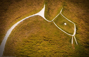 straight from the horses mouth -  Uffington White Horse aerial photograph