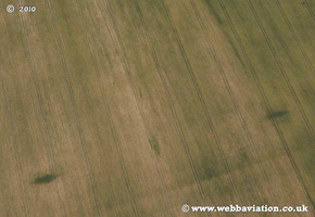 Crop marks in Wiltshire aerial photo