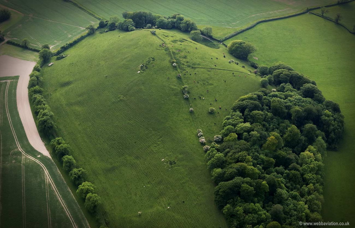 Long Knoll Wiltshire aerial photograph