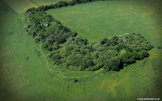 Martinsell Hillfort Wiltshire  aerial photograph