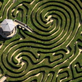 the Maze at L Longleat Safari and Adventure Park, in Wiltshire aerial photo
