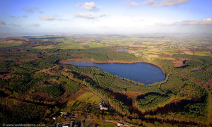 Delamere Forest aerial photograph