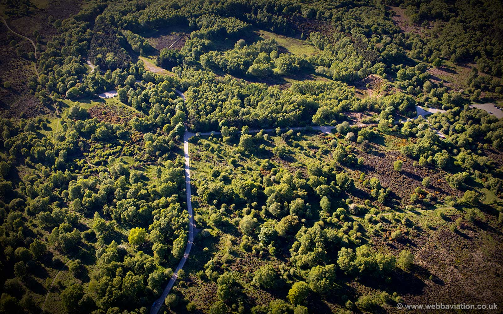 Cannock Chase Staffordshire aerial photograph